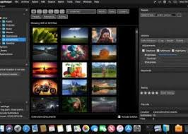 ImageRanger Pro 1.7.8.1690 Plus Crack Full [Latest] 2021